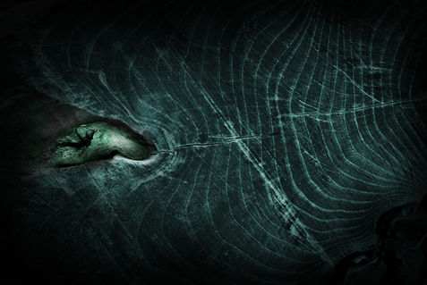 Darkness-0785-morbus