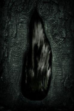 Darkness-1831-incognita