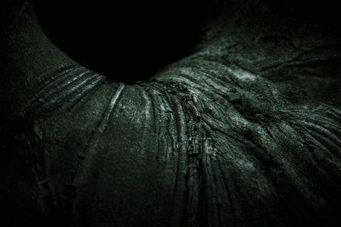 Darkness-7630-fistulae