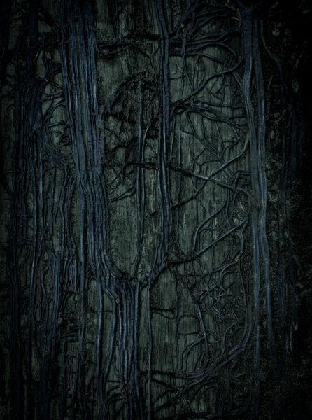 Darkness-7715-reticula-hd