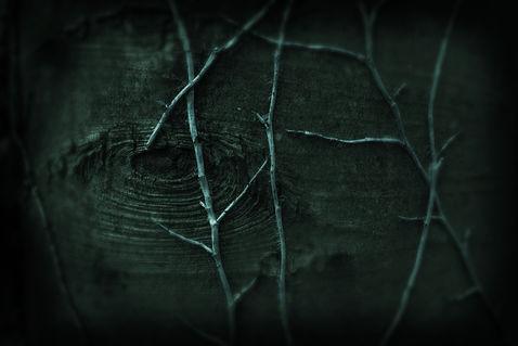 Darkness-dsc-0871-sinapsi