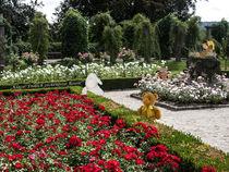 Besuch im Rosengarten von Anni Freiburgbärin von Huflattich