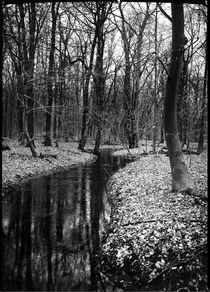 Bergheil 3 by Nils Volkmer