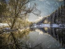 Die winterliche Donau bei Beuron - Naturpark Obere Donau by Christine Horn