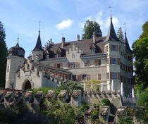 Schloss Seeburg in Kreuzlingen 5 von kattobello