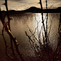Duenensee von Florian Reckert