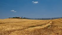 Val d'Orcia in der Toskana/Tuscany by Thomas Lotze