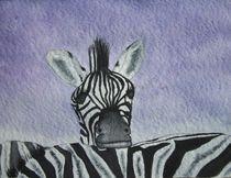 Zebra schwarz weiß wildtiere by Uschi Stoffels