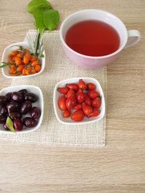 Früchtetee mit Kornelkirsche, Hagebutte und Sanddorn by Heike Rau
