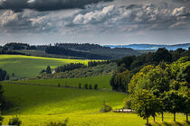 Sommer in Wildewiese by Simone Rein
