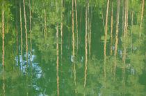 Waldsee von J.A. Fischer