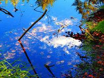Wasser-Wald-Wolken by Zarahzeta ®