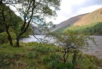 Glendalough... 6 by loewenherz-artwork