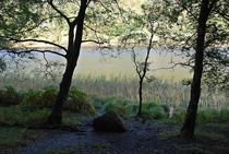 Glendalough... 4 by loewenherz-artwork