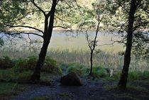 Glendalough... 4 von loewenherz-artwork