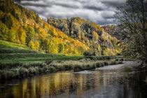 Die Donau beim Jägerhaus - Naturpark Obere Donau by Christine Horn