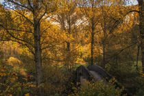 Steinbrücke bei Beuron - Naturpark Obere Donau by Christine Horn