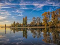 Sonniger Herbstnachmittag auf der Halbinsel Mettnau bei Radfolfzell - Bodensee von Christine Horn