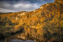 Die Donau bei Beuron im Herbst - Naturpark Obere Donau von Christine Horn