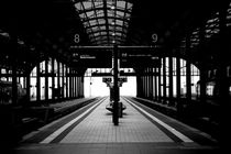Wiesbaden Hauptbahnhof  by Bastian  Kienitz