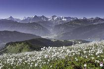Alpenkette vom Gemmenalphorn by Raphael Schaefer