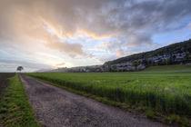 Gerader Feldweg und Obermoos im Sonnenuntergang von Raphael Schaefer