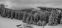Rarau Winter Paradice  von Enache Armand Iustinian