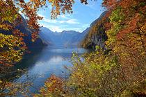 Herbst am Königssee von Bernhard Kaiser