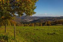 Herbst in Nachrodt-Wiblingwerde von Simone Rein