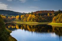 Herbst an der Versetalsperre by Simone Rein