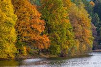 Herbst an der Fürwiggetalsperre von Simone Rein