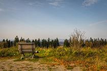 Herbst auf der Nordhelle von Simone Rein