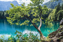 Lago di Fusine von Mathias Karner
