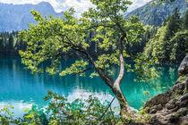 Lago di Fusine by Mathias Karner
