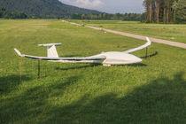 Segelflieger von Mathias Karner