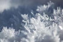 Eiskristalle von Mathias Karner