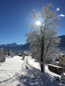 Winter Landschaft von Mathias Karner
