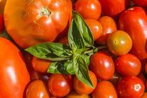Tomaten von Mathias Karner