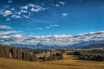 Landschaft im Ostallgäu von Christine Horn