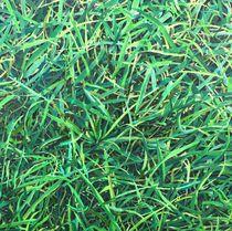 Gras I by Christian Woschek