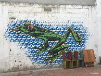 street frog von mokiwi
