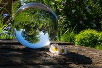 Frühling in der Glaskugel by Nadine Gutmann