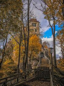 Schloss Bronnen im Herbst - Naturpark Obere Donau von Christine Horn