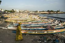 Fish Market Senegal by Xaume Olleros