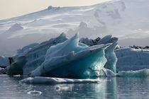 Gletschersee von michael-shumway
