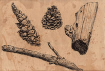 Forest treasures, cone,  branch, piece of wood by Ellen Paul watercolor