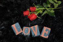 Liebes - Rosen von Claudia Evans