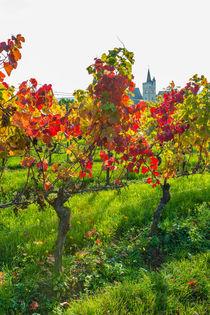 Herbst an der Burgkirche 20 by Erhard Hess