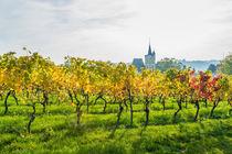 Herbst an der Burgkirche 21 von Erhard Hess