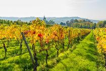 Herbst an der Burgkirche 30 by Erhard Hess